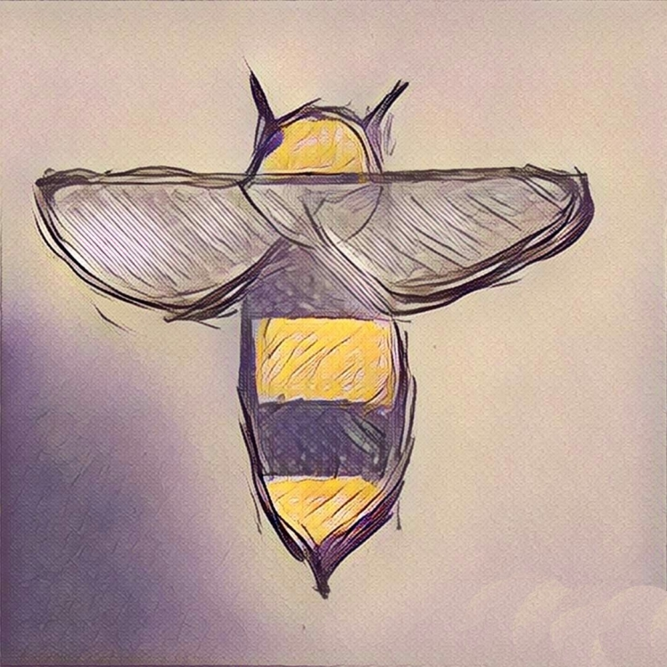 Simpl: Dein Honig