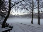 Imkerei Simpl in Eis und Schnee